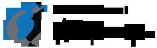 logo foncé